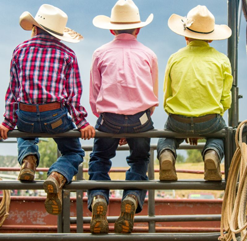 Three boys stilling on Bucking chutes at the Eagle Rodeo